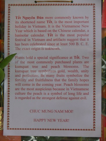 Tet overview - Melia Hotel, Hanoi, Vietnam - this card was hung on a kumquat tree outside their lobby.