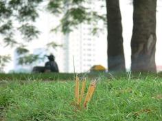 A few random incense burn in the grass.