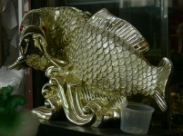 Feng Shui Fish, with coins as his scales.