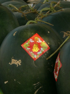 Double Happiness sticker on watermelon. Priced between D12,000 - D20,000 per kg (Hanoi 2010) . Good gifts for Tet (Lunar New Year) or country side wedding celebrations.