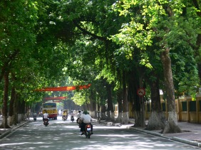 Wide tree lined streets are a blessing in the summer heat.