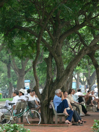 Groups of older Vietnamese people get together after morning walk or sports to have some tea (looks like beer but not), and catch up, it looks really social time and balance as the rest of the day is busy with business or grand children.