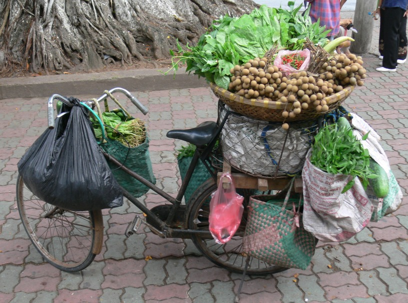 A mobile fruit and vegetable shop in Hanoi .