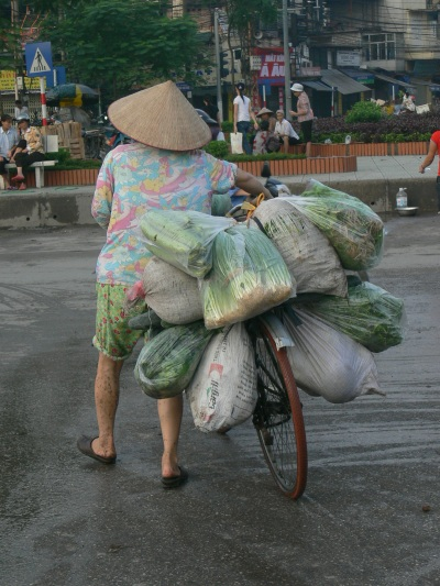 A restaurants transporting company delivering their daily vegetable order straight from Lon Bien Market., Hanoi.