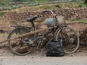 A gardeners bike come storeroom, in camouflage.