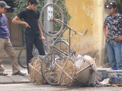 Financial disaster has struck this poor young Vietnamese guy as his load of ceramic pots he sells has flipped up and broken a few. Not good !!