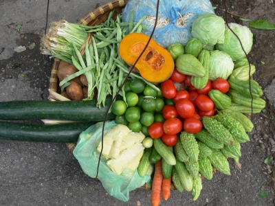 Vietnamese street vendor shows a wonderful display of veges - Need to whip up something up for dinner?? Now, shall I get . . . umm pumpkin, bean sprouts, cabbage, bitter gourd, tomatoes, carrots, cucumbers, bamboo, limes, zucchini, lemon grass, potatoes, spring onions or green beans ??