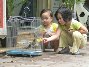 2 little Vietnamese girls feed a bird in a cage - See this is the way you feed the birdie !!