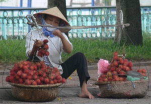 Vietnamese fruit vendor is sorting her wares (rumbutan or chom chom fruit), only offer the best of the best as Vietnamese demand only the highest quality and freshest available.