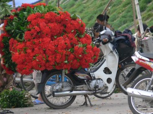 Motorbike at Hanoi Flower Market or Cho Quan An has been half unloaded.