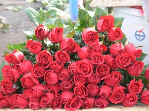 Roses - my favorite !! - in Hanoi Flower Market or Cho Quan An.